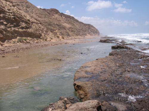 חוף געש שפיים מין מזדמן גייז